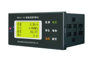 MC51-Y2 智能流量积算仪