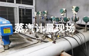 蒸汽流量计量解决方案